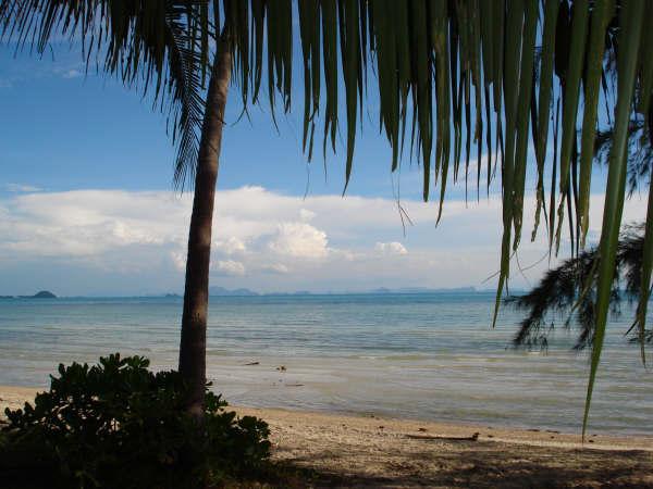 Koh Samui, beach land, beach land for sale,