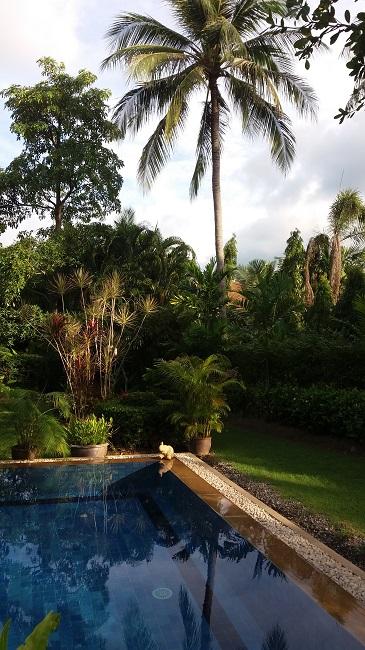 Koh Samui, 3 bed bungalow, Samram Gardens, Maenam, pool and garden