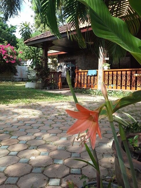 Koh Samui, Lamai, 3 bedroom bungalow for sale, villa for sale, front garden,