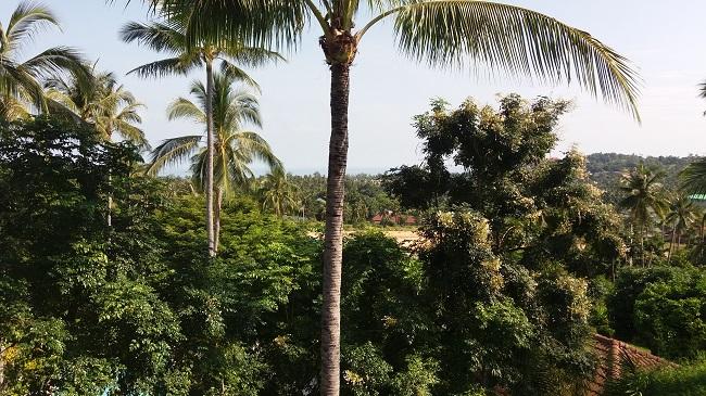 Koh Samui Condo for sale, Koh Samui Condominium for Sale, 2 bedroom Condo, Apartment for Sale, sea view,