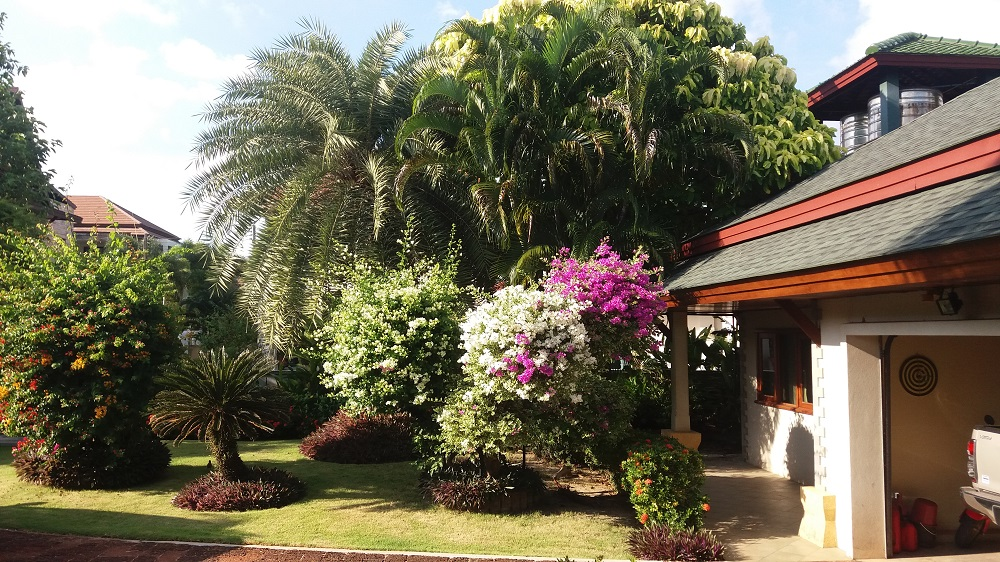 Koh Samui Beach Villa for sale, Bungalow on the beach for sale, front garden,