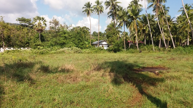 Koh Samui flat land for Sale, Tong Krut land for Sale, near the sea, mountain view land,