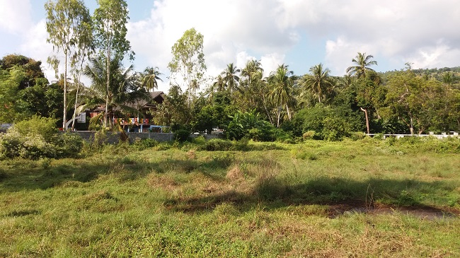 Koh Samui flat land for Sale, Tong Krut land for Sale, near the sea,