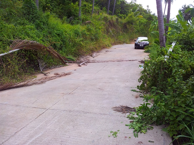 Koh Samui Land for sale, Hillside land for sale, top road,