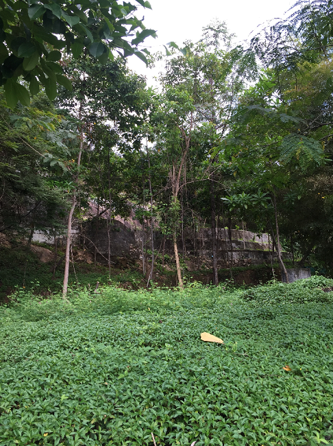 Koh Samui Sea View land for sale, Hillside land for sale, rock features,