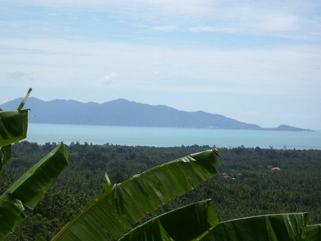 Koh Samui Sea view land for sale, hillside land for sale,