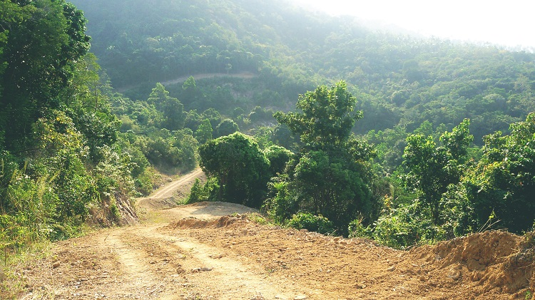 Koh Samui Hillside land for sale, 36 Rai sea view land for sale, road on land,