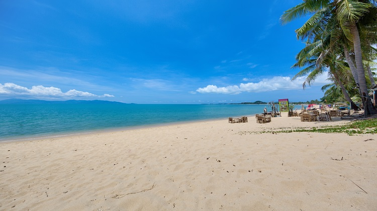Koh Samui Luxury Villa for sale; Koh Samui Beach front Villa for Sale, Beach,