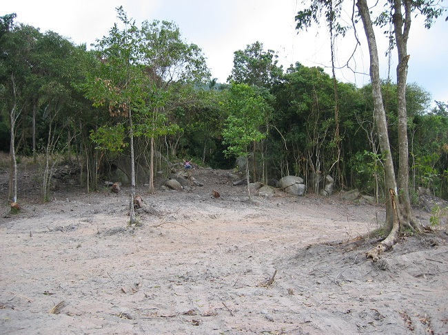 Koh Samui land for sale, Flat land for sale in Koh Samui,