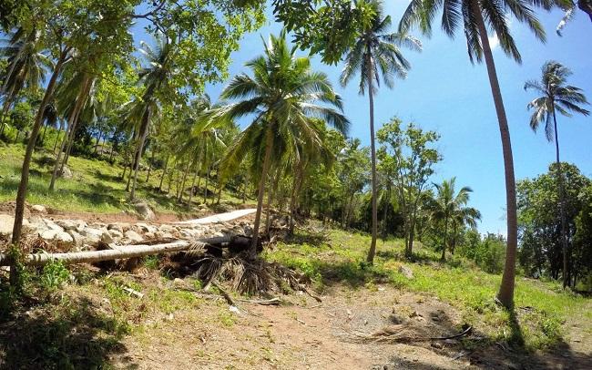Koh Samui land for sale, Chaweng Noi land for sale, Plot 3,