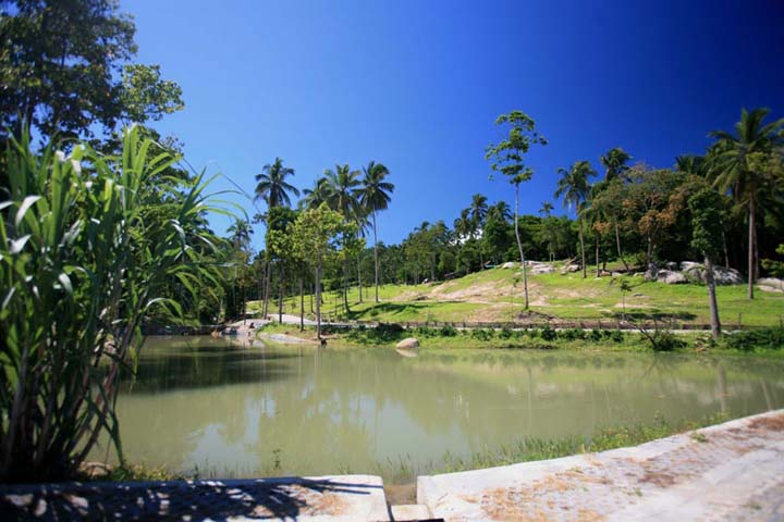 Koh Samui Luxury land plots for sale, sea view land plots for sale, one rai land plots for sale, reservoir,