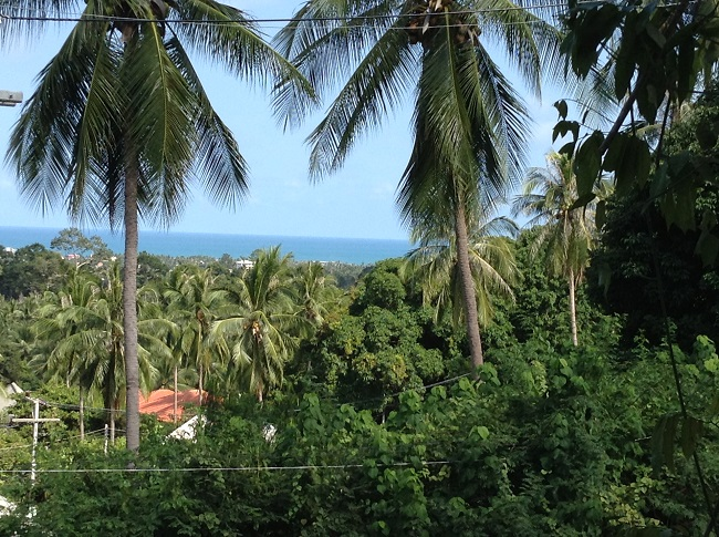 Ko Samui Properties land for sale, hillside land for sale in Koh Samui, sae view,