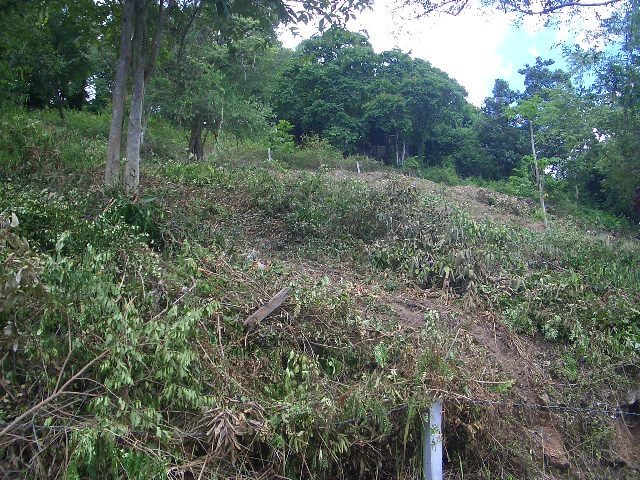 Ko Samui Properties land for sale, hillside land for sale in Koh Samui,