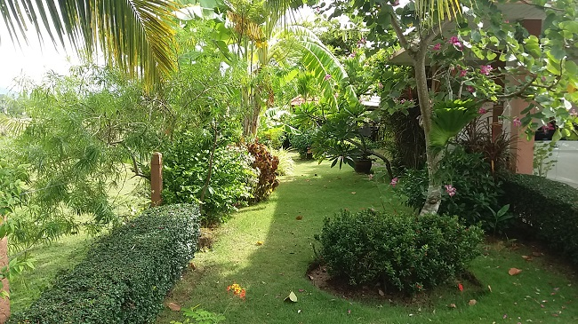 Ko Samui Properties disabled design bungalow for sale, bungalow for sale in Koh Samui, bungalow with wheel chair access, tropical garden,