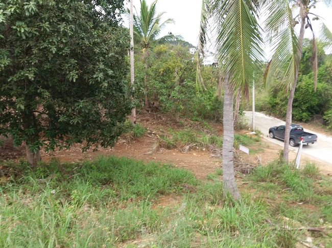 Ko Samui Properties seaview land for sale, hillside land for sale, Bophut land for sale,