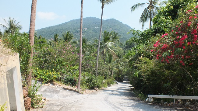 Ko Samui Properties sea view land for sale in Taling Ngam, Service land for sale in Taling Ngam Koh Samui, Thailand property for sale, Thailand land for sale,