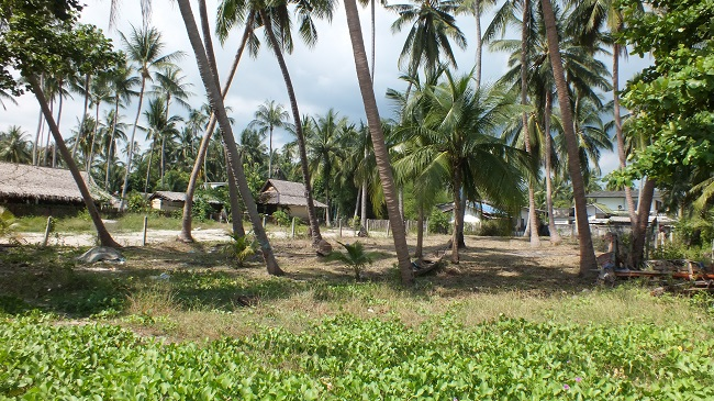 Ko Samui Properties beach land for sale, beach land for sale in Thailand, beach land for sale in Koh Samui,