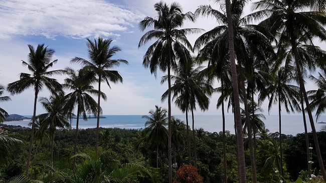 Ko Samui Properties sea view villa for sale, Chaweng Noi Villa for Sale,