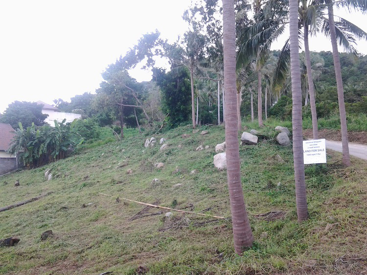 Ko Samui Properties sea view land for sale, Hillside land for sale, Thailand land for sale,