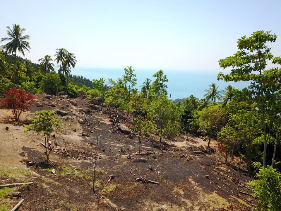 Ko Samui Properties sea view land for sale, hillside land for sale, land for sale in Koh Samui, Thailand land for sale,