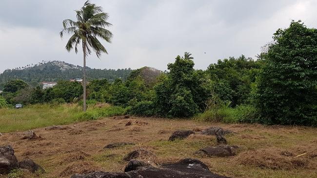 Ko Samui Properties land for sale, one rai plot for sale in Choengmon, Koh Samui Land for Sale, Koh Samui estate agent,