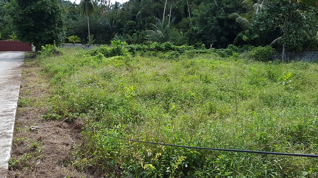 Ko Samui Properties land for sale, five land plots for sale in Taling Ngam,